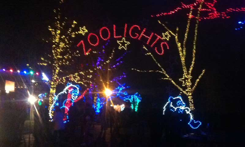 Entrance | DC Zoo Lights | Woodley Park Zoo