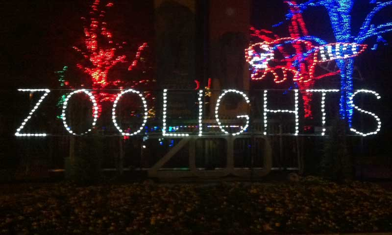 DC Zoo Lights